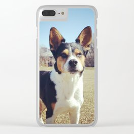 Wallace field Clear iPhone Case