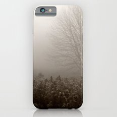 Falls first frost iPhone 6s Slim Case