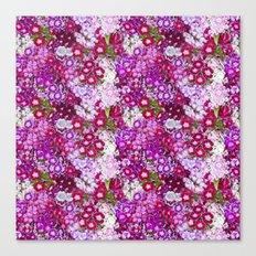 Florecilllas de colores Canvas Print
