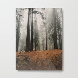 Forest I Metal Print