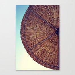 stroh Canvas Print