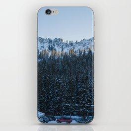 Brighton Trees iPhone Skin