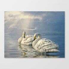 Whoopers Canvas Print