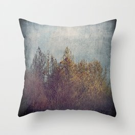 8854 Throw Pillow