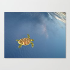 hawksbill swimming in the sky Canvas Print