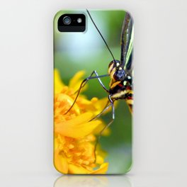 The Zebra Longwing iPhone Case