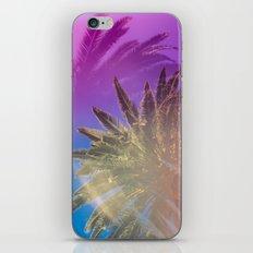 Palm Tree Skyline iPhone & iPod Skin