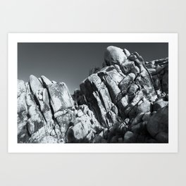 Big Rock 5793 Joshua Tree Art Print
