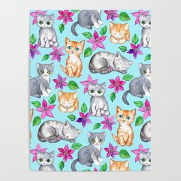 Kittens and Clematis - blue Poster