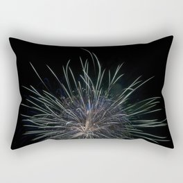 Fireworks make you wanna... Rectangular Pillow