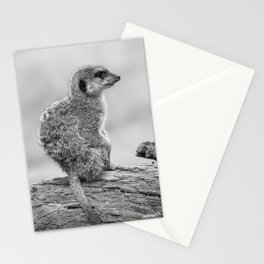 Meerkat (Black and White) Stationery Cards