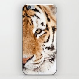 Tiger Portrait iPhone Skin