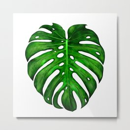 Monstera leaf paintings iPhone 4 4s 5 5c 6 7, pillow case, mugs and tshirt Metal Print