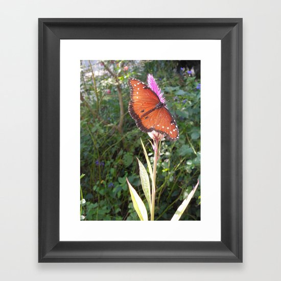 Spread My Wings Framed Art Print