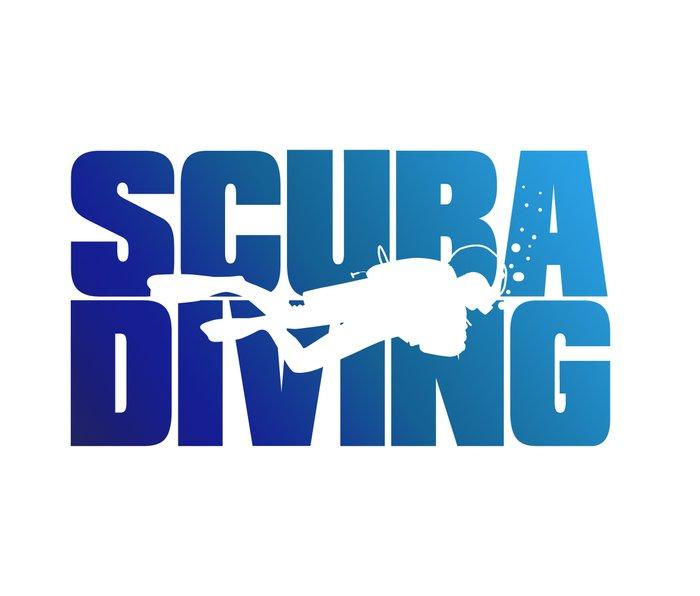 Scuba Diving Metal Travel Mug