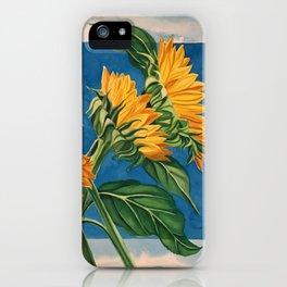 Sunny Skies iPhone Case