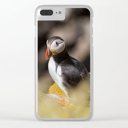 Puffin from Ireland (RR 284) Clear iPhone Case