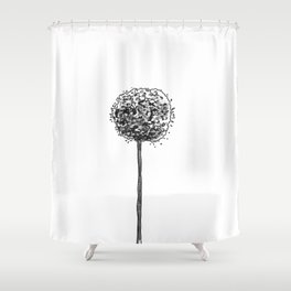 Allium pom Shower Curtain