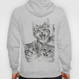 Kittens Pattern Cute Meowing Cats Hoody