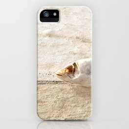 Lost Fish iPhone Case