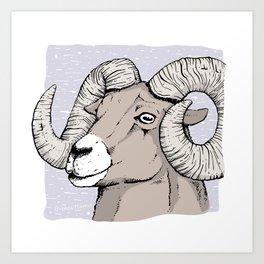 Big Horn Sheep Ink Drawing Art Print