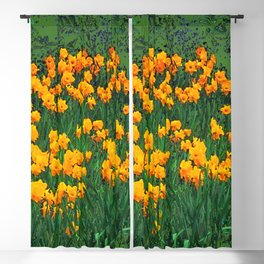 GREEN GARDEN OF YELLOW SPRING DAFFODILS Blackout Curtain