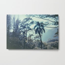 Rain Forest Fog Metal Print