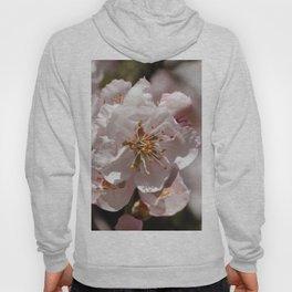 Almond Blossom 001 Hoody