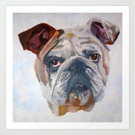 American Bulldog Portrait: Yale Mascot Art Print