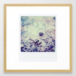 fall time Framed Art Print