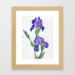 Drawn To You Framed Art Print