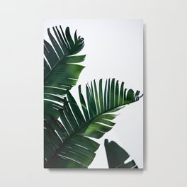 Palm Leaves 16 Metal Print