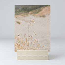 Sea Oat Mini Art Print