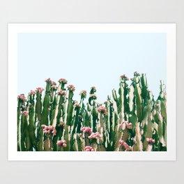 Blush Cactus #society6 #decor #buyart Art Print