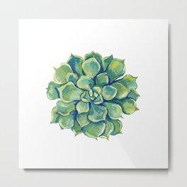 November Succulents Metal Print