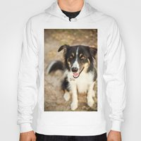 border collie Hoodies featuring Border Collie by Paw Prints By Jamie