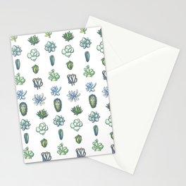 One Dozen Succulents Stationery Cards
