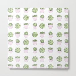 Green and pink suculents in flowerpots Metal Print