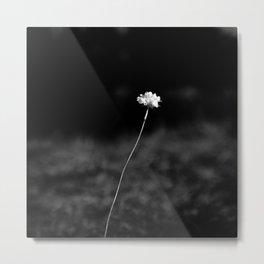 THE LAST FLOWER Metal Print