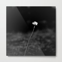 LAST FLOWER Metal Print
