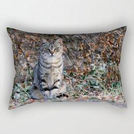 Sitting cat posing Rectangular Pillow