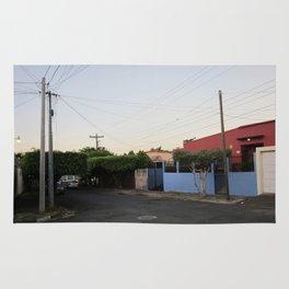 Managua 2 Rug