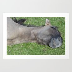 Grinning Horse Art Print