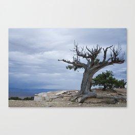 A storm on the horizon Canvas Print