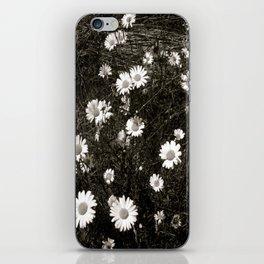 My Lazy Daisy iPhone Skin
