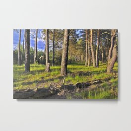 Dreaming Summer Forest Metal Print