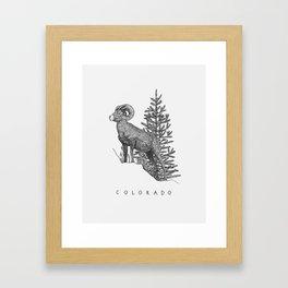 COLORADO STATE Framed Art Print