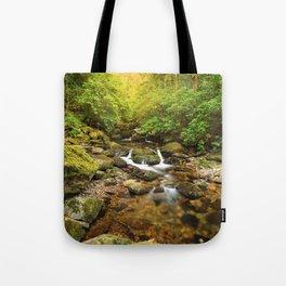 Stream under Torc Waterfall Tote Bag