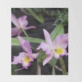 Cattleya Horace Maxima Orchid Throw Blanket