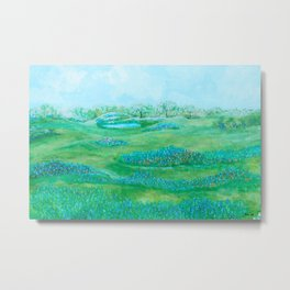 Texas Abstract Landscape Metal Print